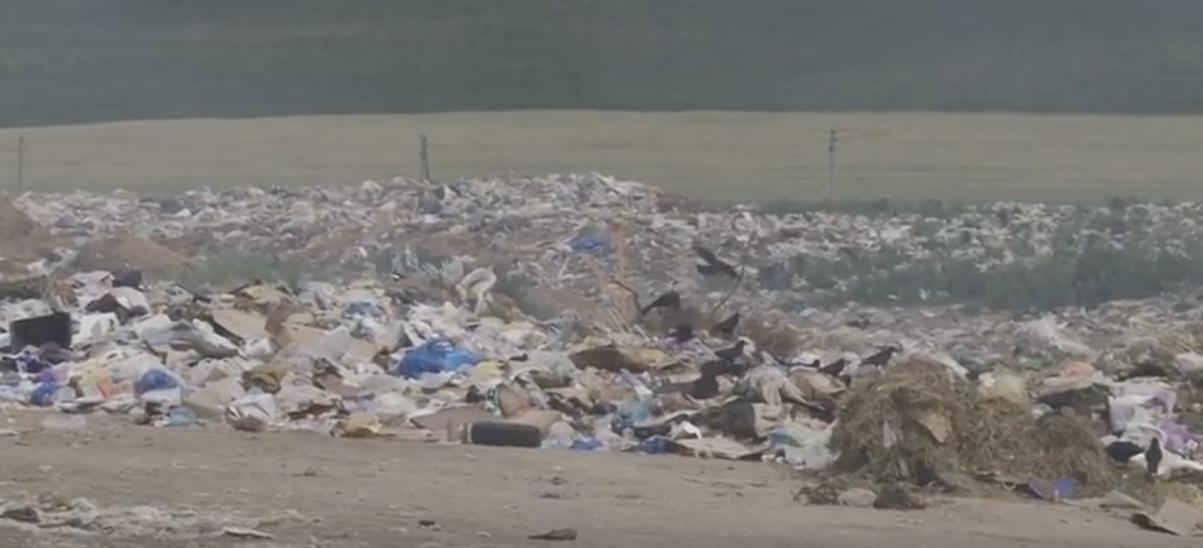 Шевченко: «Строительство в Комрате завода по переработке мусора позволит решить проблему во всем регионе»